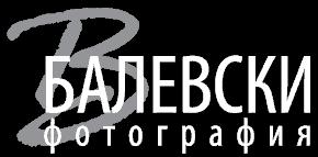 balevsk-logo